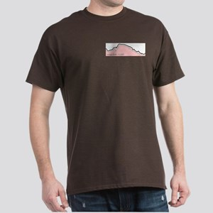 Longs Peak 14er Collection Dark T-Shirt