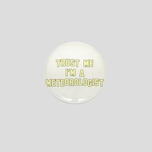 Trust Me I'm a Meteorologist Mini Button