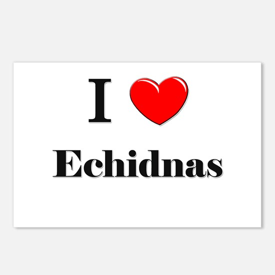 I Love Echidnas Postcards (Package of 8)