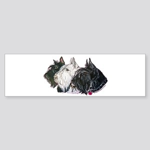 Scottish Terrier Trio Sticker (Bumper)