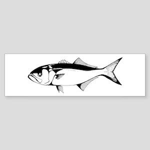 bluefish Bumper Sticker