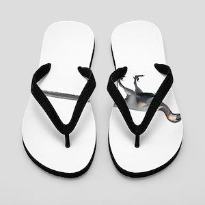 Dino Flip Flops