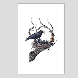American Crow Postcards (Package of 8)