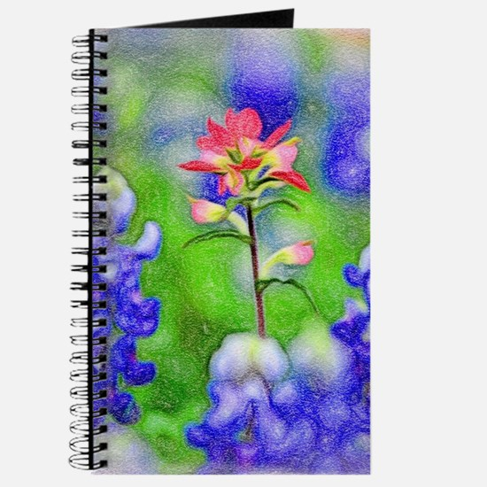 Bluebonnets and Indian Paintbrush Journal