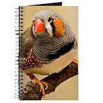 Zebra Finch Journal
