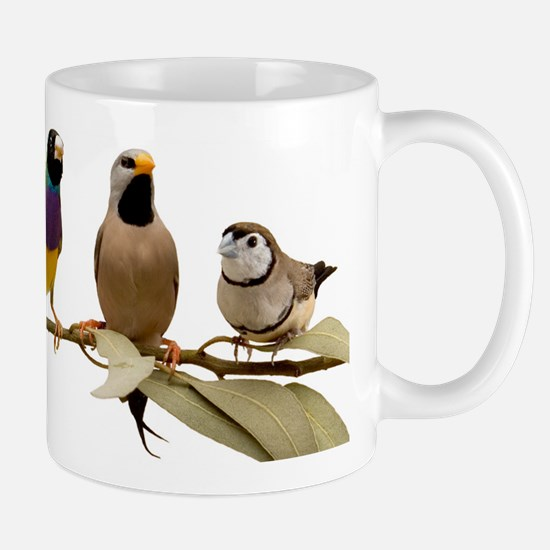 Kimberley Outback Finch Mug