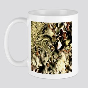 Lichen on Canvas by Picasso Mug