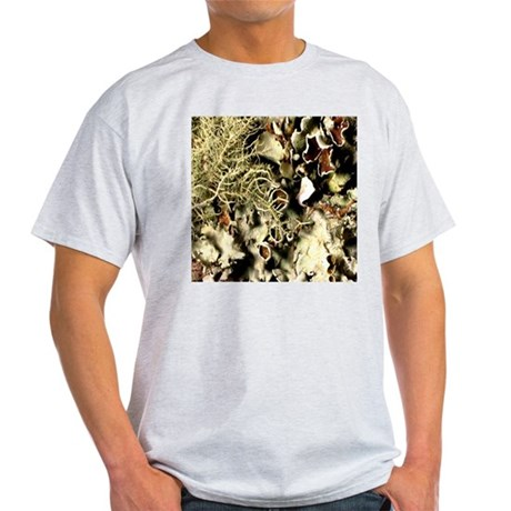 Lichen on Canvas by Picasso Light T-Shirt