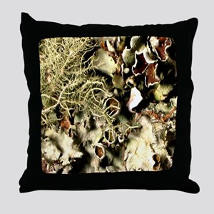 Lichen on Canvas by Picasso Throw Pillow