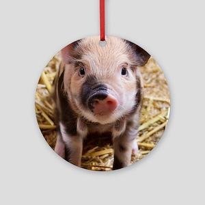 Pig Round Ornament