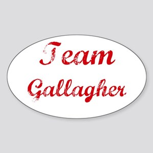 TEAM Gallagher REUNION Oval Sticker