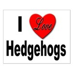 I Love Hedgehogs Small Poster