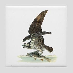 Osprey Bird Tile Coaster