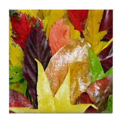 Leaves of Many Colors Tile Coaster