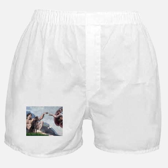 Weimaraner Creation Boxer Shorts