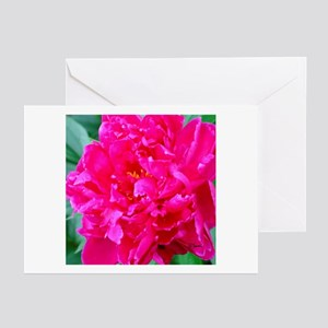 Pink Peony Greeting Cards (Pk of 10)