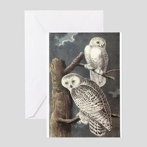 Snowy Owls Greeting Card
