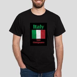 San Gimignano Italy T-Shirt