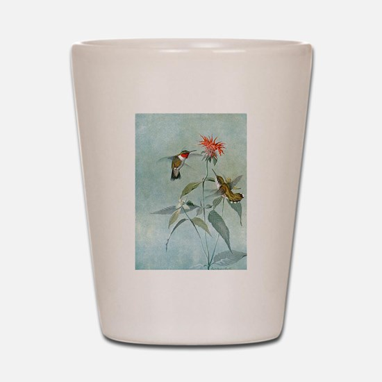 Hummingbirds Shot Glass