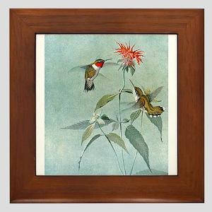 Hummingbirds Framed Tile