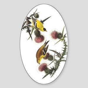 American Goldfinch Oval Sticker