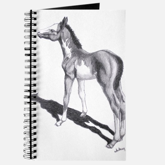 """Paint Foal """"Something in the Journal"""