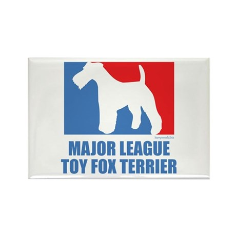 ML T.F.T. Rectangle Magnet (10 pack)