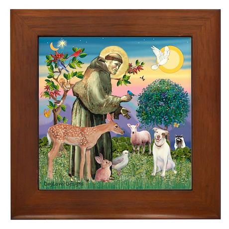 St Francis / Pitbull Framed Tile