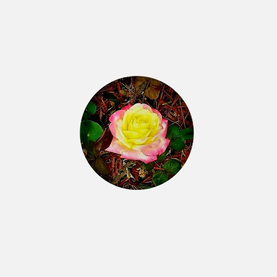 Stunning March Rose Mini Button