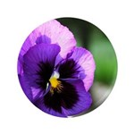 "Purple Pansy 3.5"" Button"