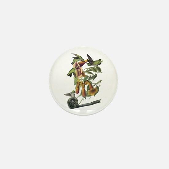 Ruby-throated Hummingbird Mini Button