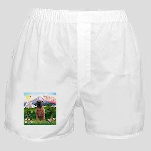 Fuji Spring/Shar Pei Boxer Shorts
