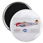 Republic Thunderbolt Aircraft Magnet