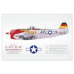 Republic Thunderbolt Aircraft Large Poster