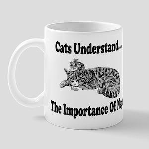 Cats Understand Mug