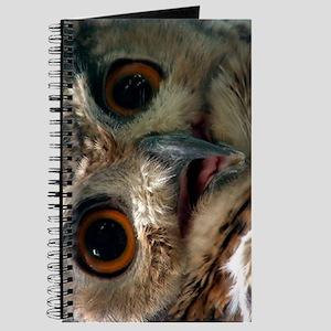 Mysterious Owl! Journal