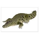 Nile Crocodile crawl Posters