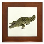 Nile Crocodile crawl Framed Tile