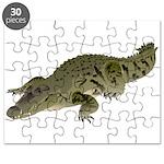 Nile Crocodile crawl Puzzle
