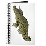 Nile Crocodile crawl Journal
