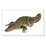 Nile Crocodile crawl Sticker