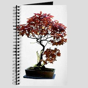 Red Leaf Bonsai Journal