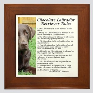 Chocolate Lab Rules Framed Tile