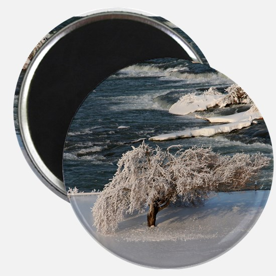 Ice Covered Winter Tree Magnet