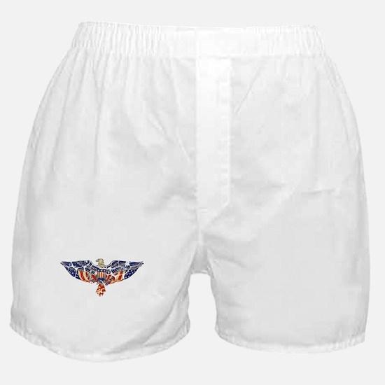 Retro Eagle and USA Flag Boxer Shorts