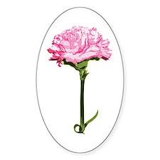 Pink Carnation Oval Sticker