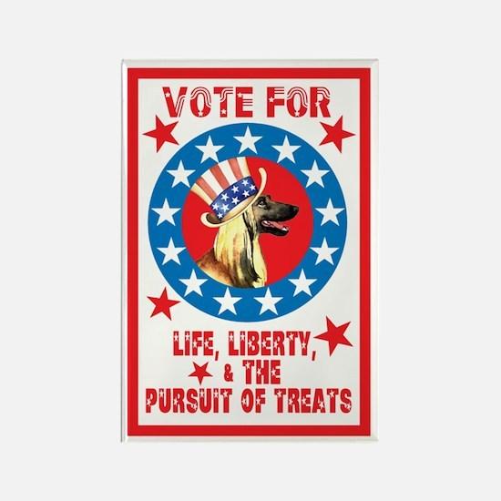 Vote for Afghan Hound Rectangle Magnet