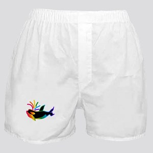 Rainbow Orca Boxer Shorts