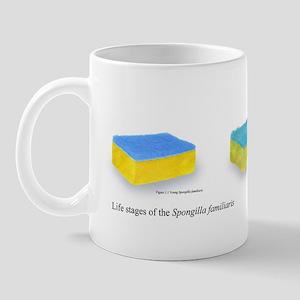 Life Stages of the Dish Sponge Mug
