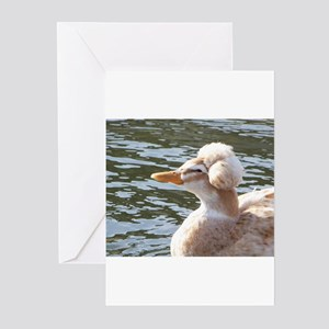 Crested Duck Greeting Cards (Pk of 10)